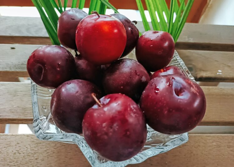 Cherry red plums