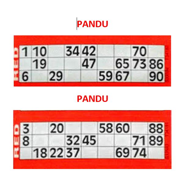Pandu Tickets  for Tambola Games with a Holi Theme