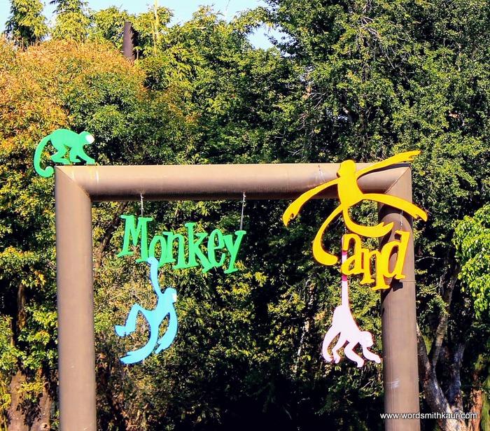 Zoologico Guadalajara Monkeyland