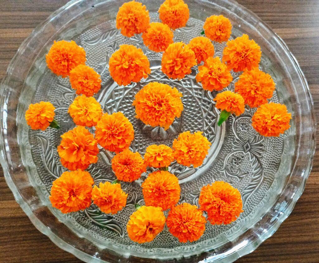 Floating Marigolds